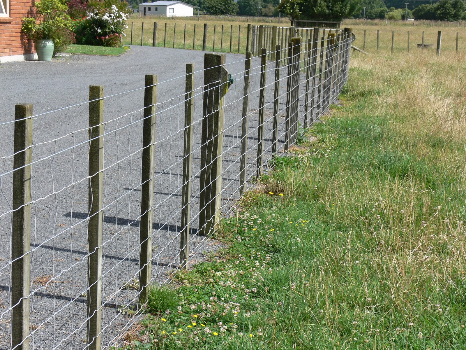 Woolshed 1: New Zealand farming. Fencing – Glossary of terms.
