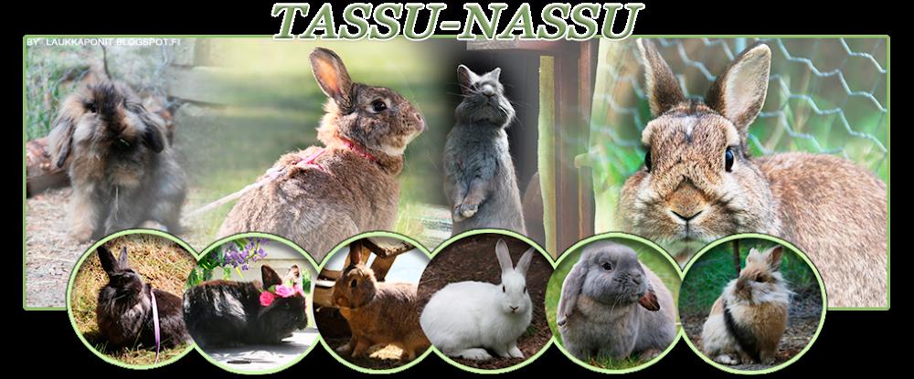 tassu-nassu