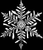 Imagen: Copo de nieve aumentado