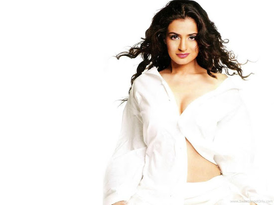Ameesha Patel Bollywood Actress HD Wallpaper