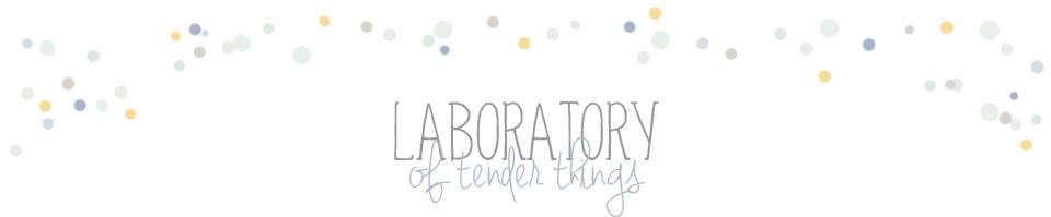 Лаборатория {нежных} вещей