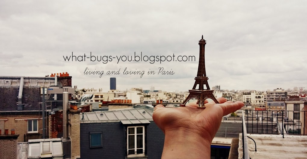 What bugs you when you live in Paris?