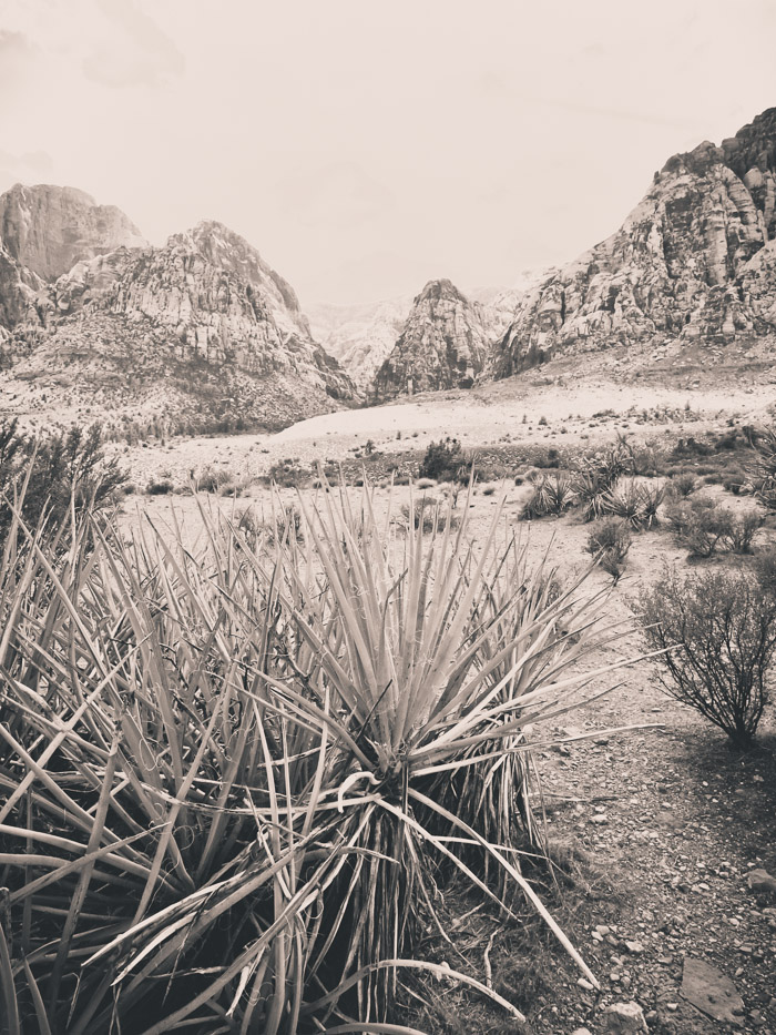 Red Rock Canyon in the Mojave Desert