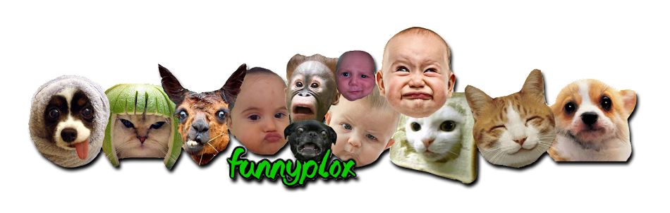 Funnyplox | Babies & Animals