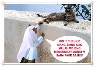 Kucing Jilbab Kumpulan Foto Kartun