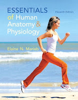 http://www.kingcheapebooks.com/2015/06/essentials-of-human-anatomy-physiology.html