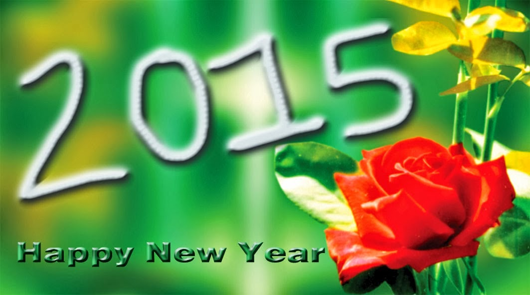Best Of Happy New Year 2015 HD Pictures
