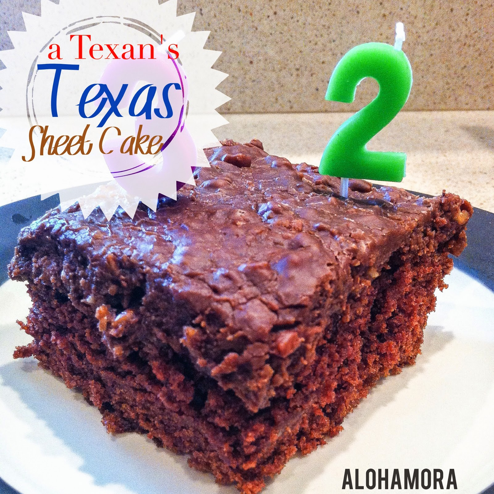 A Texan's thick and delicious chocolate Texas Sheet Cake.  Easy to make from scratch.  Moist cake with a frosting that seeps down into the cake.  So delicious!  Alohamora Open a Book http://alohamoraopenabook.blogspot.com/