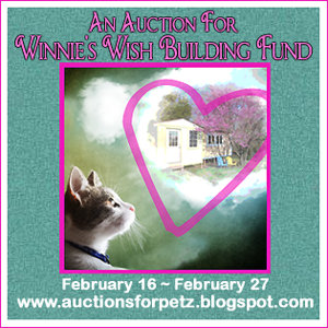 Auction for Winnie's Wish!
