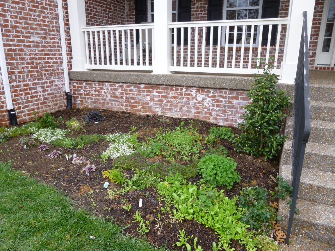 Landscaping Landscaping Ideas Next To House Foundation