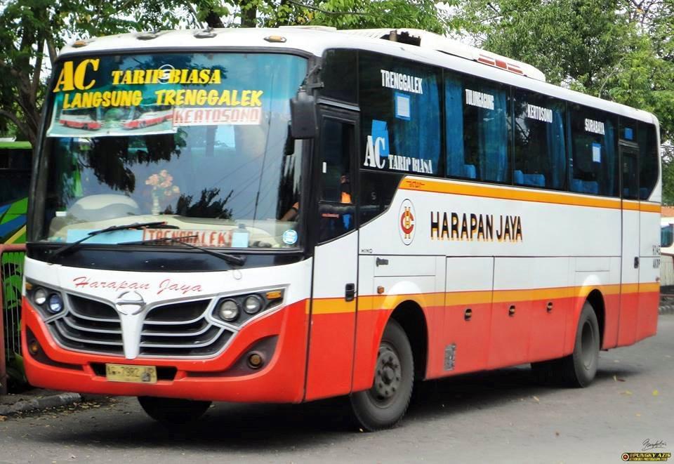 Jadwal Bus Patas Harapan Jaya Trenggalek Surabaya