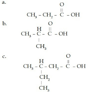 asam propanoat 2-metil 3-metil pentanoat