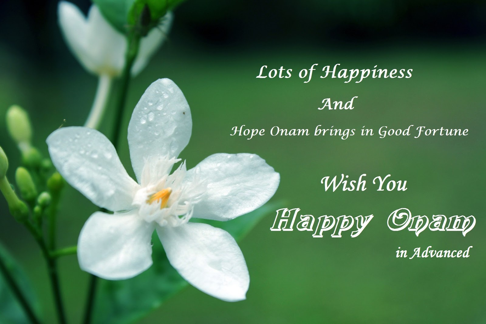 Khushi For Life Advanced Onam Greetings Cards Ecards Wishes Images