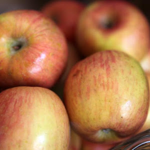 Apple Pie Bimby