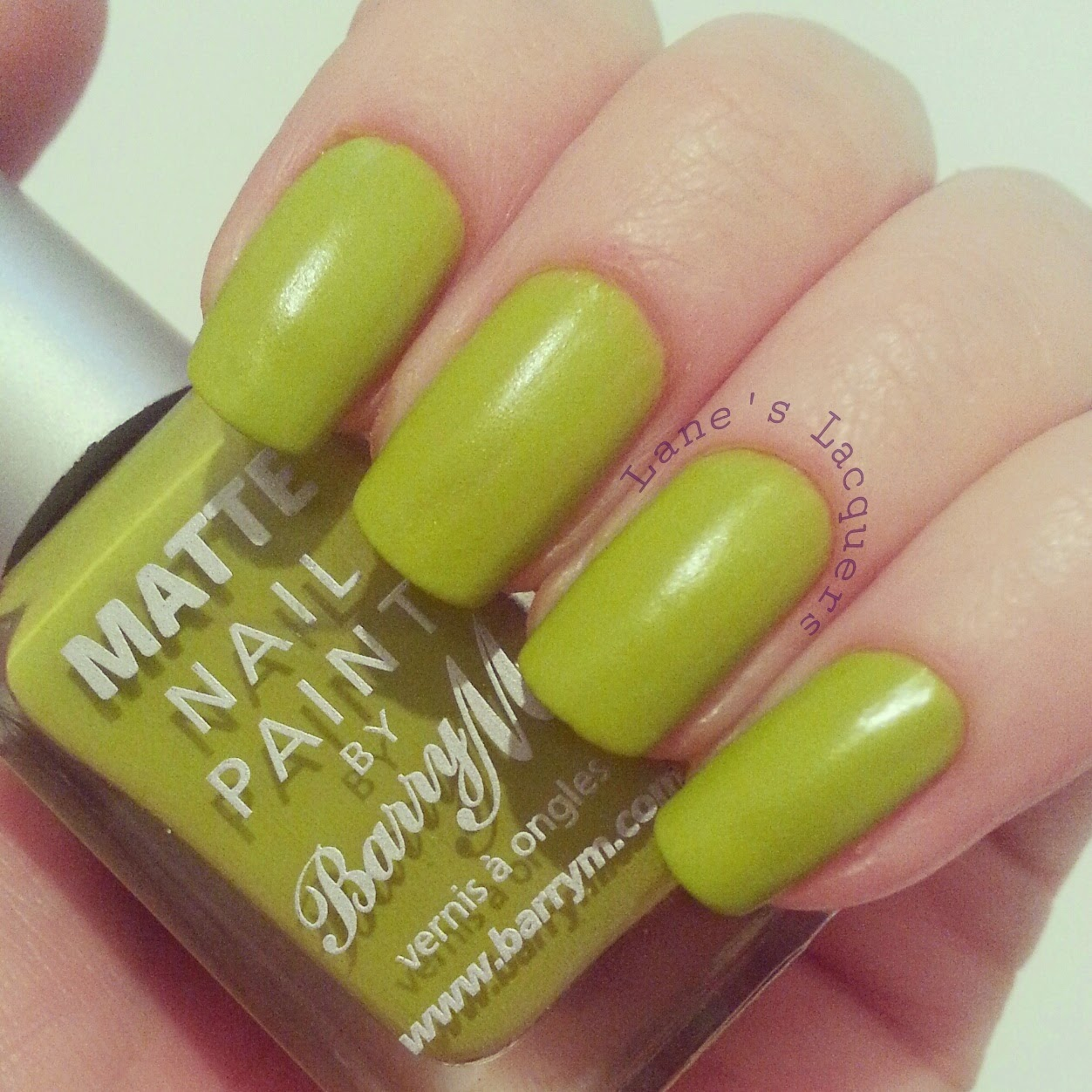 barry-m-waikiki-swatch-manicure (2)