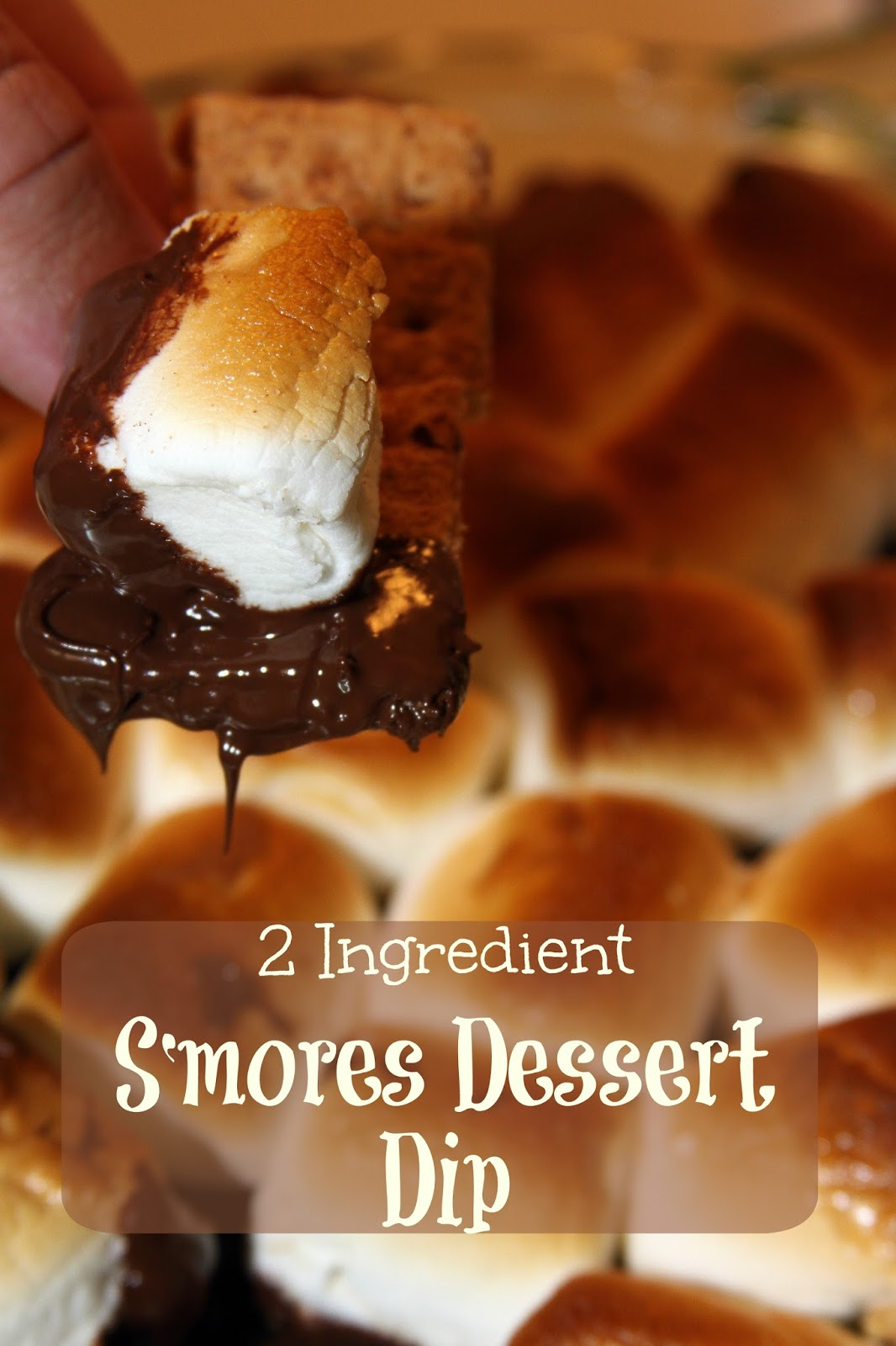 For the Love of Food: 2 Ingredient S'mores Dessert Dip