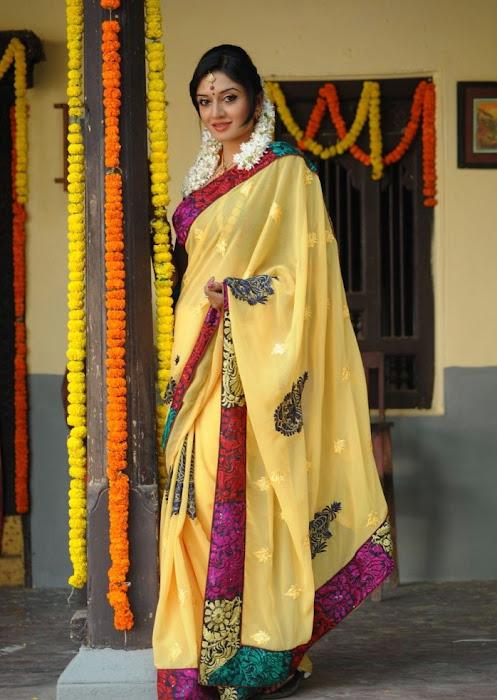 vimalaraman saree hq nowatermark hot photoshoot