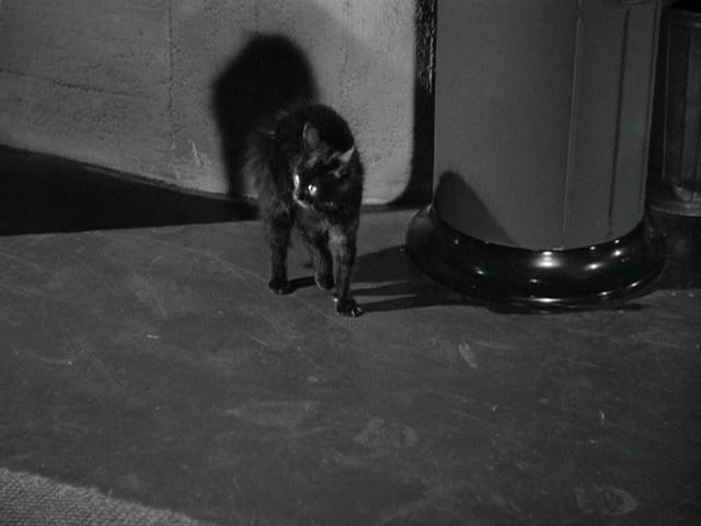 theredtele�honε still film cat people 1942