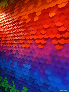 rainbow discs