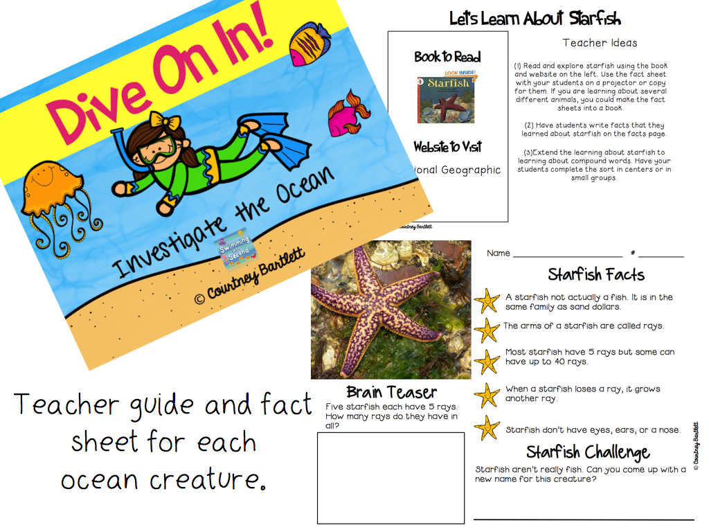http://www.teacherspayteachers.com/Product/Dive-On-In-Investigate-the-Ocean-1232602