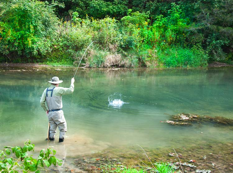 Chris zimmer fly fishing in virginia for Fly fishing virginia