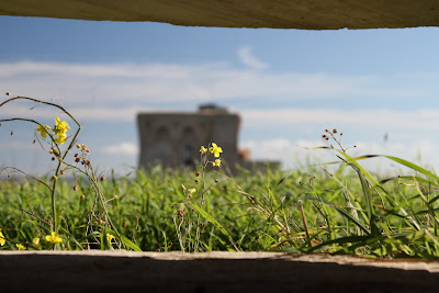 View of La Torre from Inside the Bunker