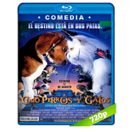 Como perros y gatos (2001) BRRip 720p Audio Dual Latino-Ingles