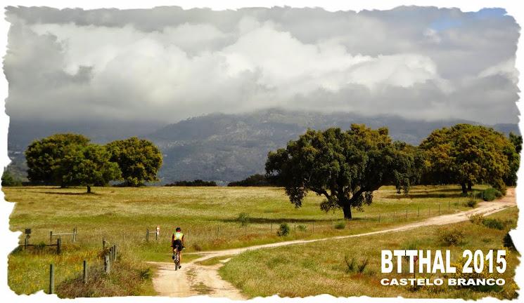 BTTHAL - Home Blog