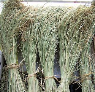 わら細工の亀の材料、稲わら干し