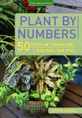 Make Living Arrangements with Houseplant Recipes