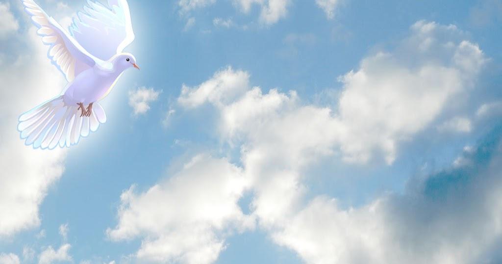 Angels Funeral Home In Mesa Az