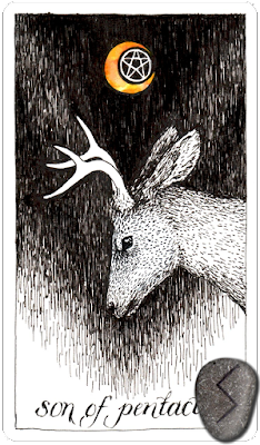 The Wild Unknown Tarot,Son of Pentacles. Runes. Sowilo