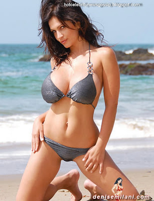 Hot Celebrity Denise Milani Sexy Stylist Pics
