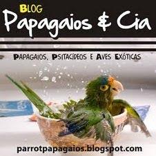Papagaios & Cia