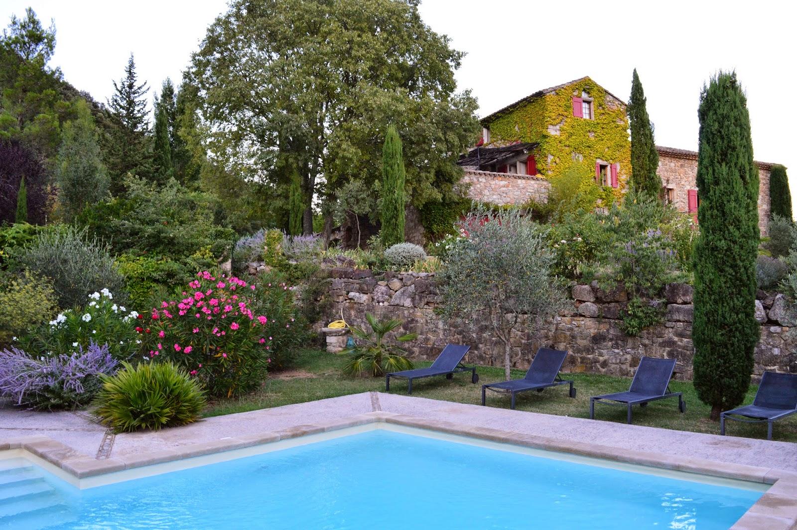 Passionn ment jardin vacances c 39 est fini for Parterre de roses photos