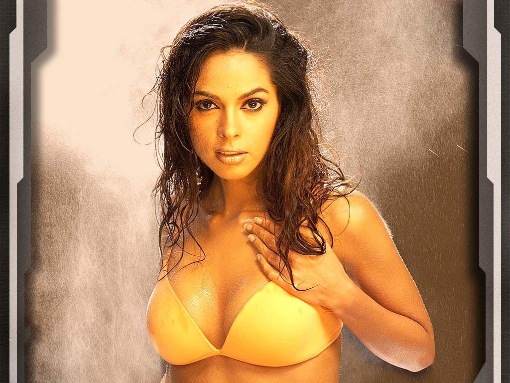 ihot wallons: hot sexy porn alopo: malika sherawat hot wallpaper