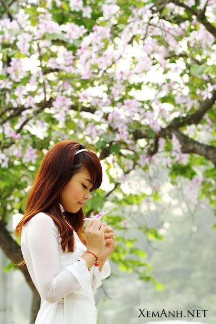 Blog Hot Girl Photo: Beautiful girl of Vietnam in Ao dai