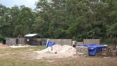 Construction de l'enclos principal qui encerclera la forêt en arrière plan