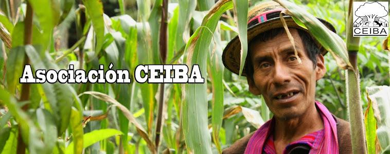 Asociación Ceiba