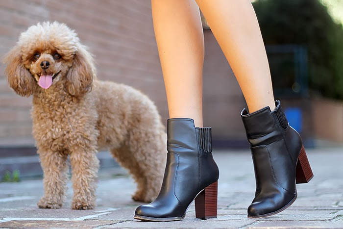 fall outfit, zara boots, comfy and cozy, autumn, cute dog