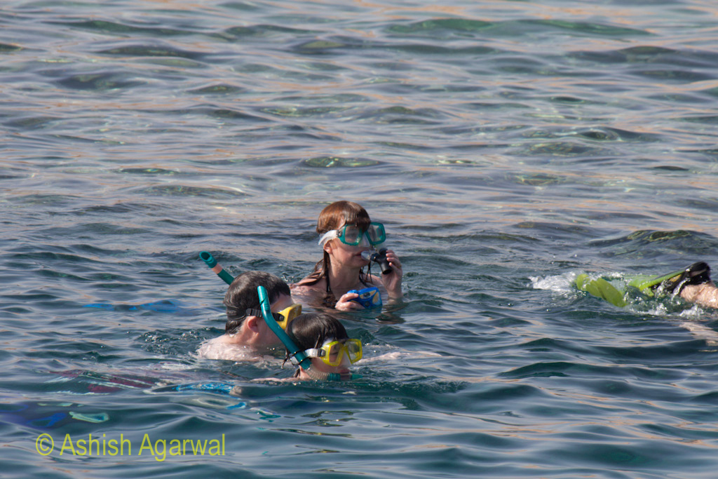 Family doing snorkeling in the water of the Ras Muhammed marine park in the Red sea