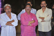 Veta Audio Release function Photos Gallery-thumbnail-15