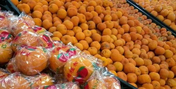 Masuk Musim Jeruk Mandarin