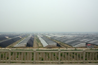 Greenhouses in rural China