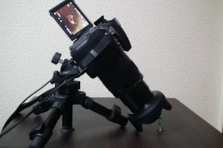 sigma 17-70mm フード付