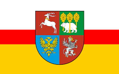 Flaga Województwa Wschodniomałopolskiego