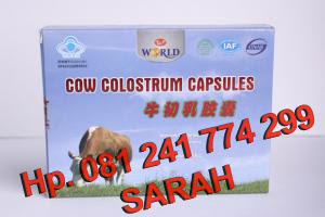 Cow Colostrums