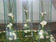 Decoração com Vasos de Vidro para Casa