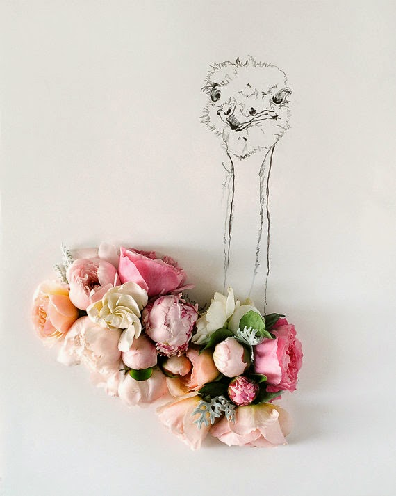 ostrich and flowers photography by kari herer