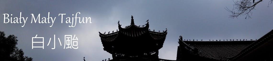 白小颱 Biały Mały Tajfun
